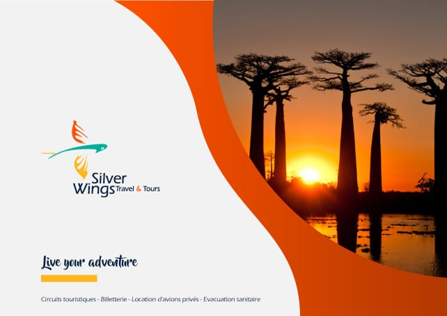 Silver Wings Travel and Tours